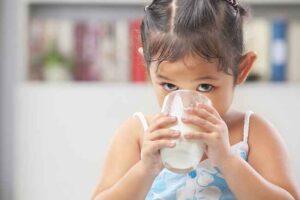 kandungan gizi susu Dancow